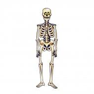 Decorazione scheletro da appendere