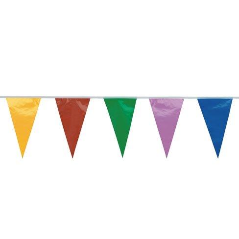 Ghirlanda bandierina multicolore (20m)