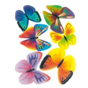 6 Farfalle in pasta azzima
