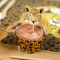 Kit Cupcakes Savana - Riciclabile images:#4