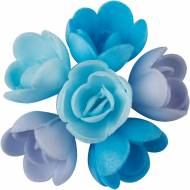 6 Mini Rose Blu (3 cm) - Azzimo