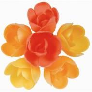 6 Roselline (4 cm) Azzimo - Sapore Frutta Esotica