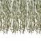 Tenda di foglie botaniche images:#0