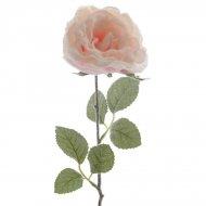 Rosa Ghiacciata su Stelo (44 cm)