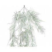 Ramo di Abete Asparagi Innevato (50 cm) - Plastica