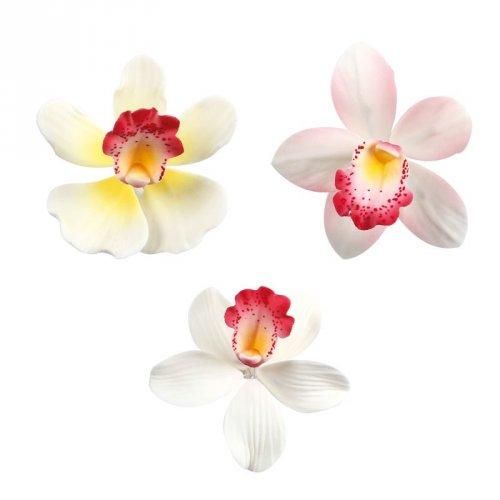 1 Orchidea (6 cm) - Non commestibile