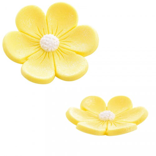 2 Anemoni (3,4 cm e 2,2 cm) - Giallo