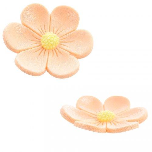2 Anemoni (3,4 cm e 2,2 cm) - Arancio salmone