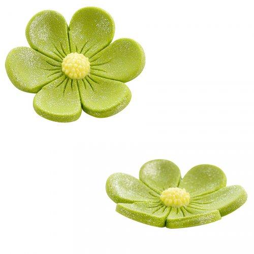2 Anemoni (3,4 cm e 2,2 cm) - Verde kaki
