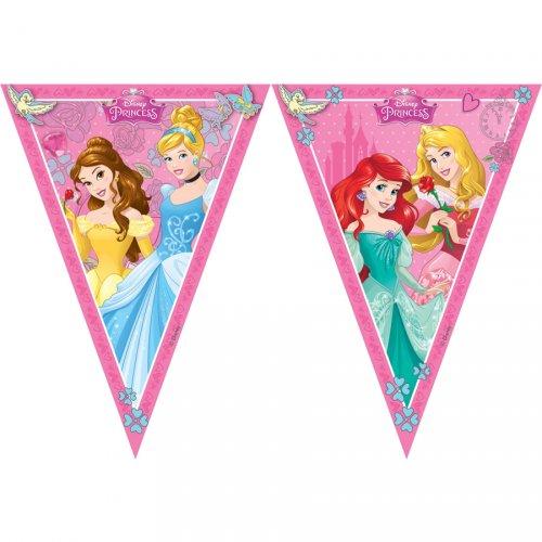 Ghirlanda bandierine principesse Disney Dreaming