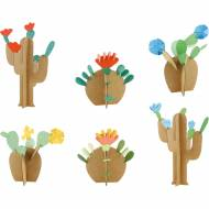 Kit creativo - I miei cactus