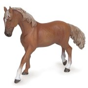 Mare figure Mare Thoroughbred English Chestnut Mare figura Mare Thoroughbred English Chestnut