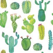20 Tovaglioli Cactus