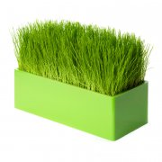 Fair Way, il runner verdure - verde