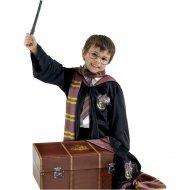 Scrigno + Costume Harry Potter