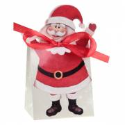 6 Party box Babbo Natale