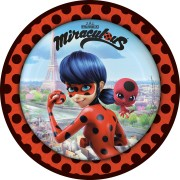 Party box Miraculous